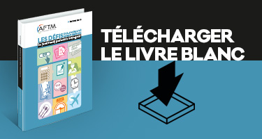 livre-blanc-picto-AFTM-Travel-Insight-manager (2)